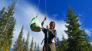 Seilsystem zum Sichern des Proviants im Banff National Park