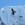 Everest-Trek - Bartgeier im Flug
