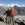 Everest-Trek - Gokyo Ri